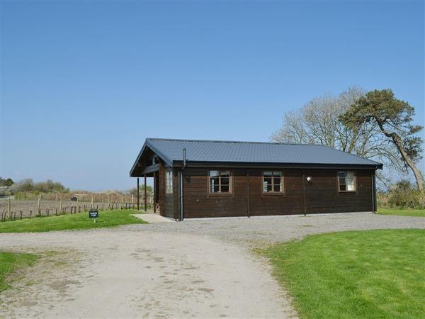 Arbigland Farm Cottages - Lapwing Lodge in Dumfriesshire