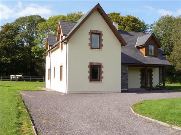 Ardnagashel Woods in Cork