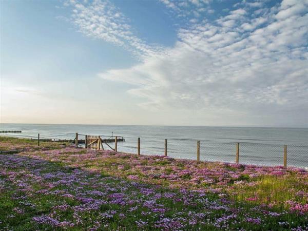 Beach View in Norfolk