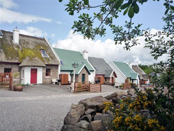 Bleachfield Cottages - Bleachfield Cottage 2 in Kerry