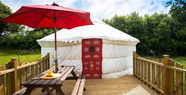 Bluebell Yurt in Cornwall