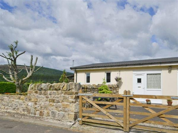 Border Forest Cottages - Stable Cottage in Northumberland