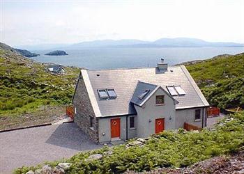 Bracken in County Kerry