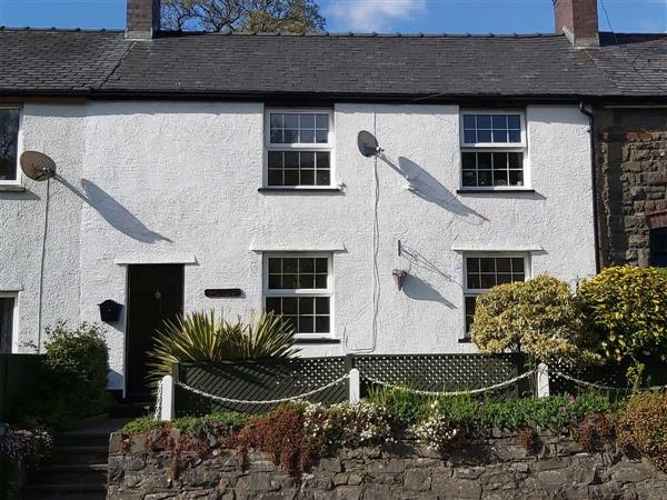 Bronhaul in Powys