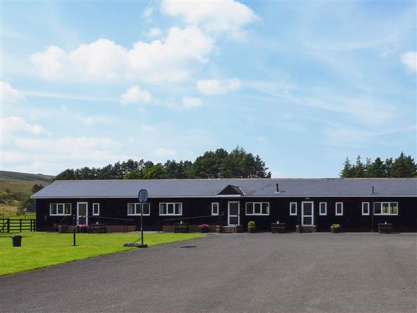Brown Rigg Lodges - Hadrian Lodge in Northumberland