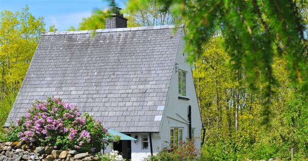 Bryn Araul in Gwynedd