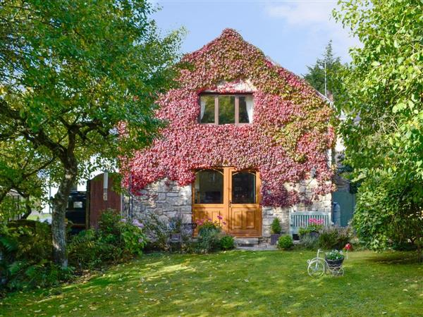 Bryn Dedwydd Cottage in Clwyd