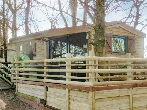 Butterfly Lodge in Dyfed