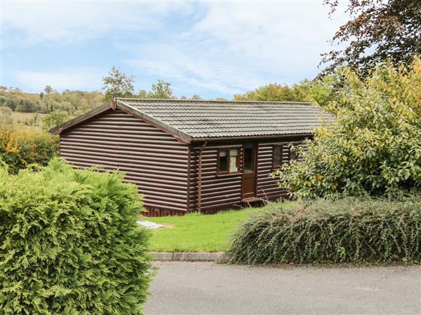 Cabin 3 in Cavan