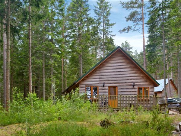 Cairngorm Lodges - Capercaillie Cabin, Aberdeenshire