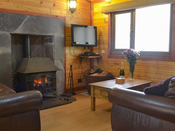 Cairngorm Lodges - Woodcutters Cabin from Cottages 4 You