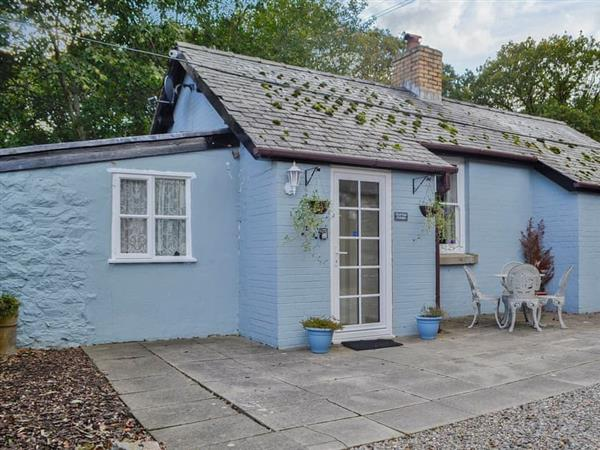 Carreg Llwyd Place - Duck Egg Cottage in Powys