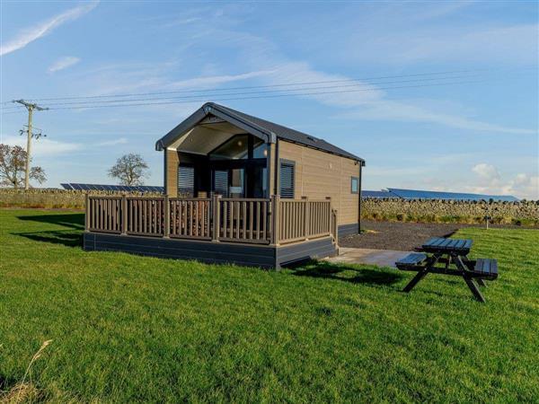 Chapman Hill Farm - Barley in Durham