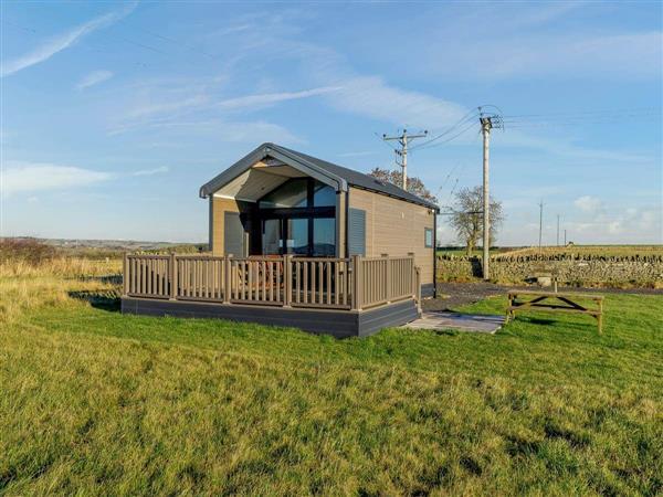 Chapman Hill Farm - Coves in Durham