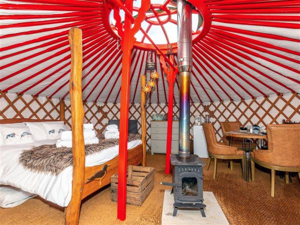 Cherish Glamping - Oystercatch in Whitby, North Yorkshire