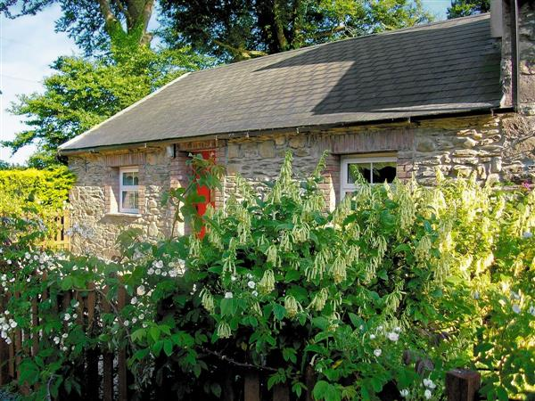 Chloes Country Cottages - Mill Cottage in Wexford