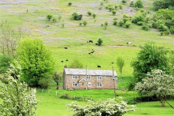 Clog Fawr Cottage in Powys