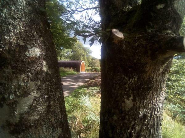 Coiltie Glampod, Drumnadrochit, Highlands
