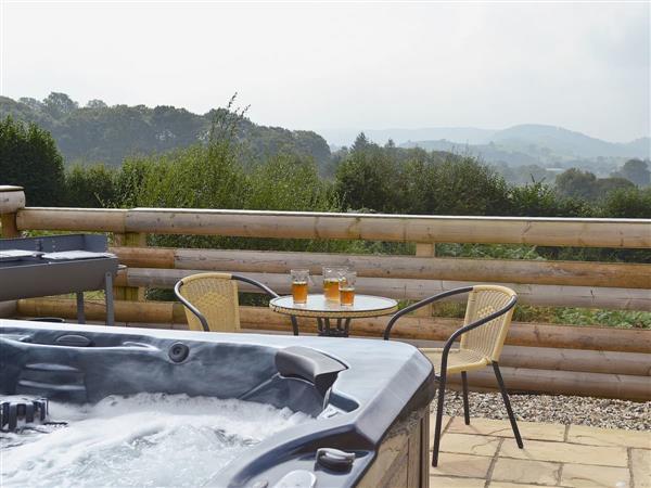 Cwm Yr Hendy Lodges - Oak View in Powys