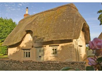 Daffodil Cottage in Gloucestershire