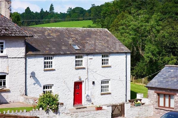 Daisy Byre in Cradoc, Powys