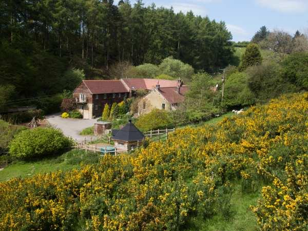 Diddlebury Cottage in Shropshire