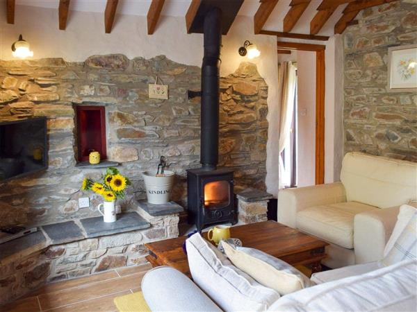 Dinas Country Club - Old Chapel Cottage, Dyfed