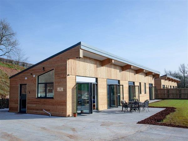 East Dunster Deer Farm – Deer Park, Cadeleigh, near Tiverton, Devon with hot tub