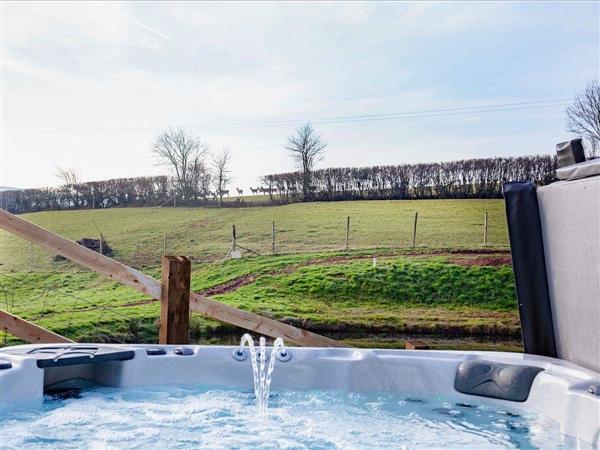 East Dunster Deer Farm – Kingfisher Lodge, Cadeleigh, Devon with hot tub
