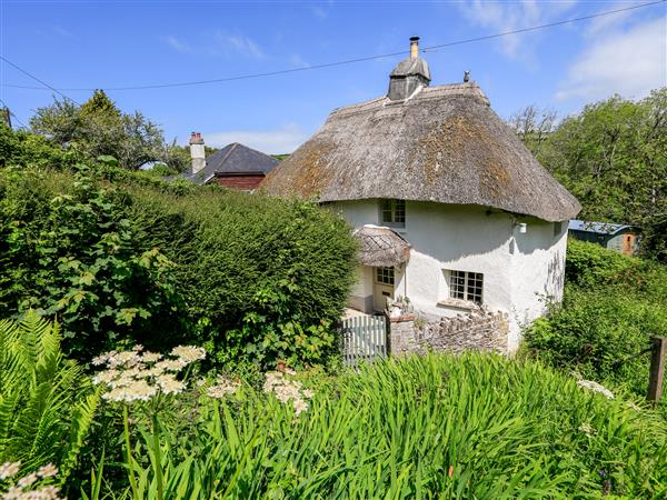 Elworthy Cottage in Devon