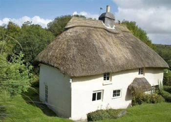 Elworthy Cottage and Shepherds Hut - Sleeps 4/6 in Devon