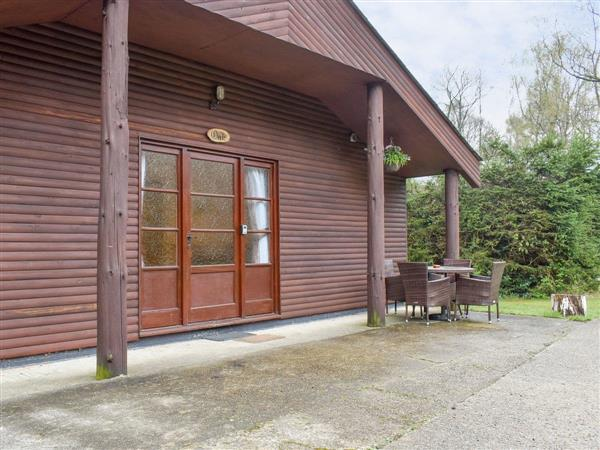 Eversleigh Woodland Lodges - Oak Lodge in Kent
