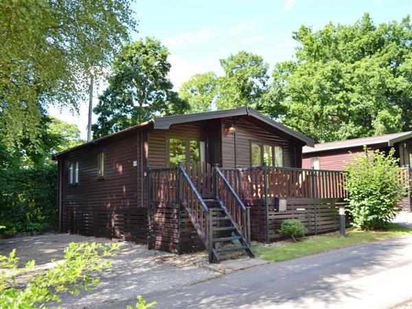 Fern Lodge - Burnside Park in Cumbria