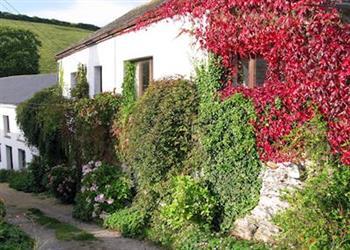 Fingals Cottages - Lower Mill in Dittisham, near Dartmouth, Devon