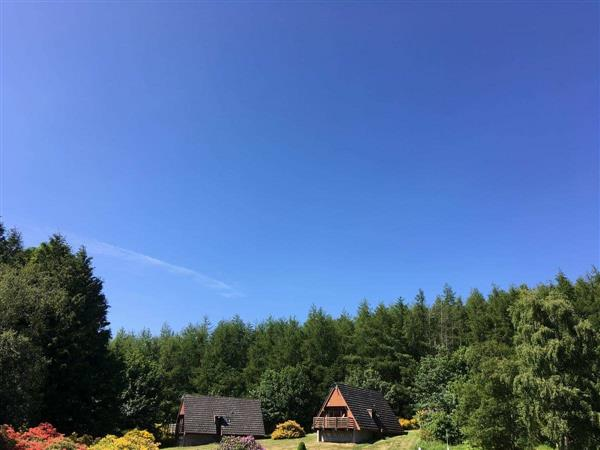 Flowerburn Holidays - Thistle Lodge in Ross-Shire