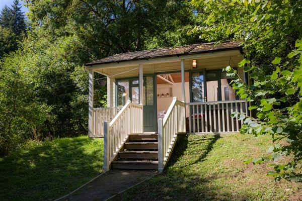 Forest Escape Cabin in Clyro, Powys