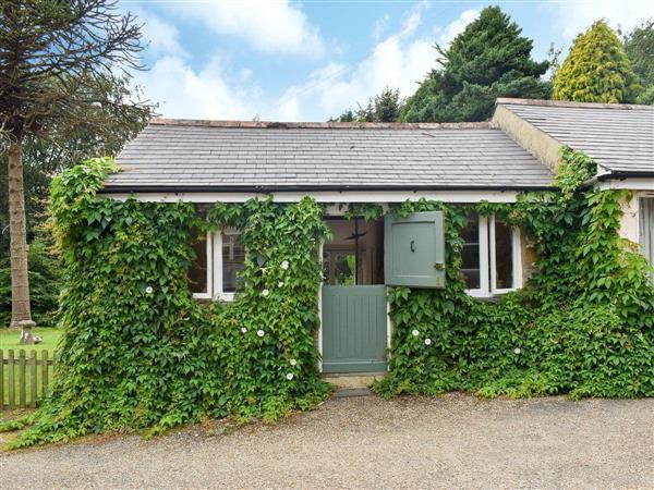 Garden Cottage in Devon