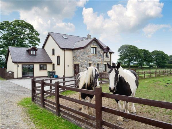 Groes Faen-Bach Farmhouse in Clwyd
