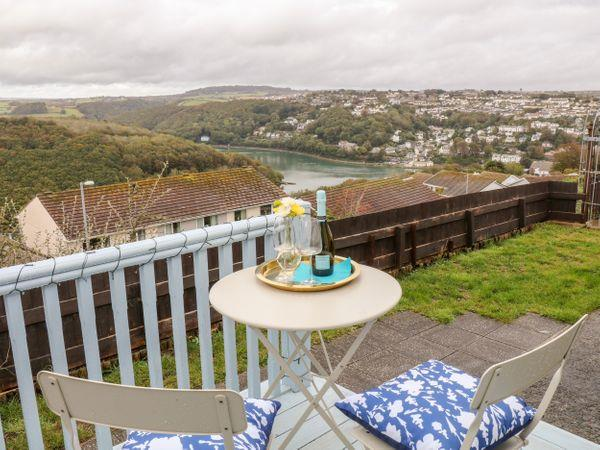 Gull's View in Looe, Cornwall