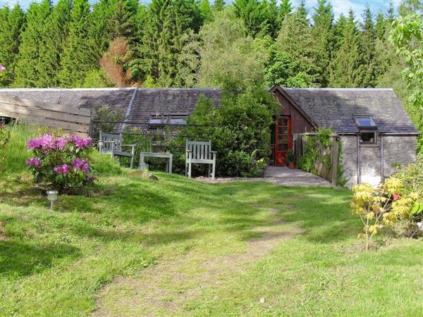 Hatton Cottages - Osprey Cottage in Perthshire