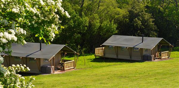 Hay-on-the-Farm Safari Tents in Herefordshire
