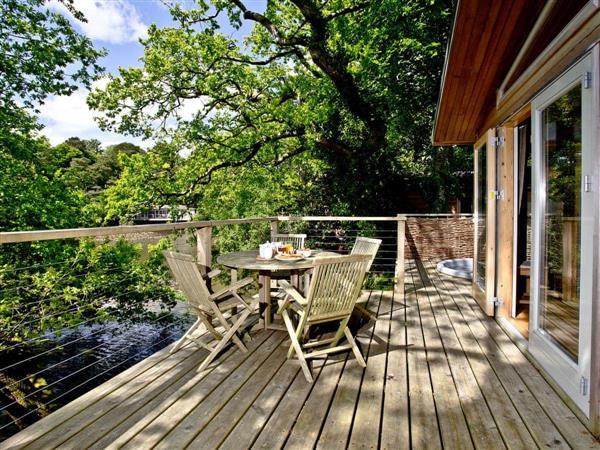 Haytor Lodge - 9 Indio Lake in Devon