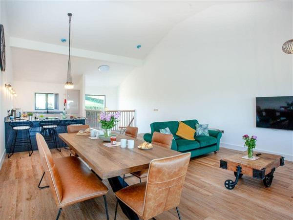 Higher Hockpitt Farm - Property 3, Over Stowey, near Bridgwater, Somerset with hot tub