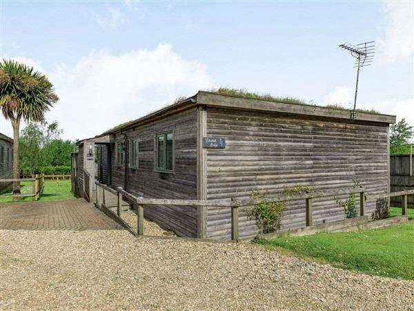 Higher Shorston Lakes and Lodges - Bluebell Lodge in Devon