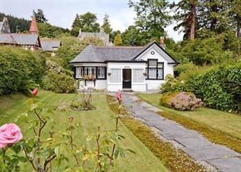 Honey Bee Cottage in Ross-Shire