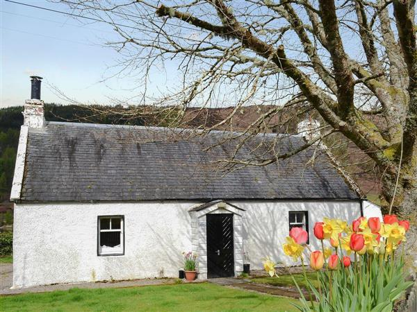 Ivy Cottage in Inverness-Shire