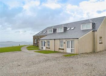 Killean Estate - Heather in Argyll