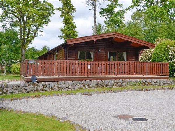 Kipp Paddock - Bluebell Lodge in Kirkcudbrightshire
