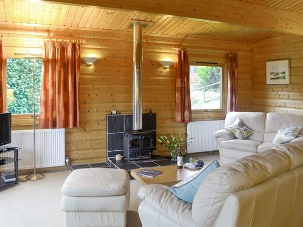Kipp Paddock - Laurel Lodge in Kirkcudbrightshire