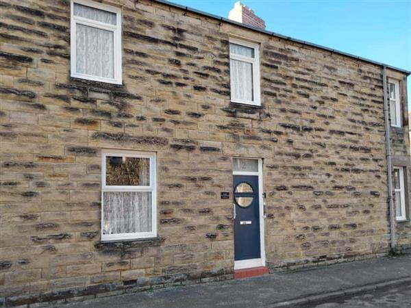 Kiwi Corner in Amble, near Warkworth, Northumberland